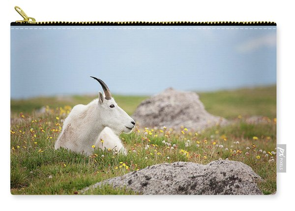 Lie Down In Green Pastures Carry-all Pouch