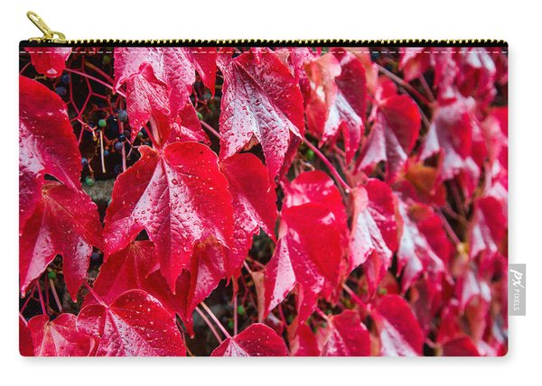 Linne Color Carry-all Pouch