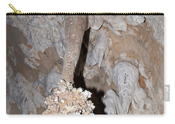 Lions Tail Carlsbad Caverns National Park Carry-all Pouch