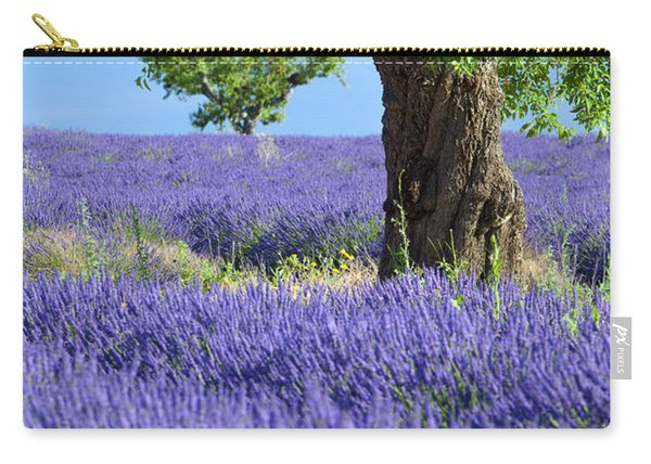 Carry-all Pouch featuring the photograph Lone Tree In Lavender by Brian Jannsen
