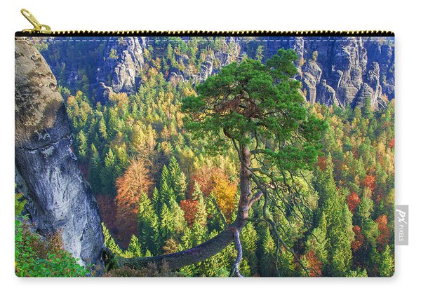Lonely Tree In The Elbe Sandstone Mountains Carry-all Pouch
