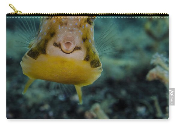 Longhorn Cowfish, Lembeh Strait Carry-all Pouch