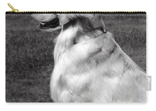 Looking Golden Carry-all Pouch