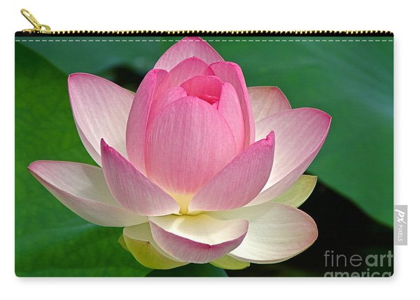 Lotus 7152010 Carry-all Pouch