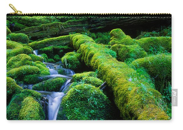 Lower Proxy Falls Carry-all Pouch