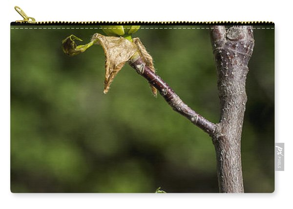 Magnolia Buds Carry-all Pouch