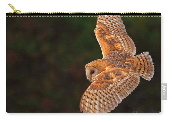 Majestic Flight Carry-all Pouch