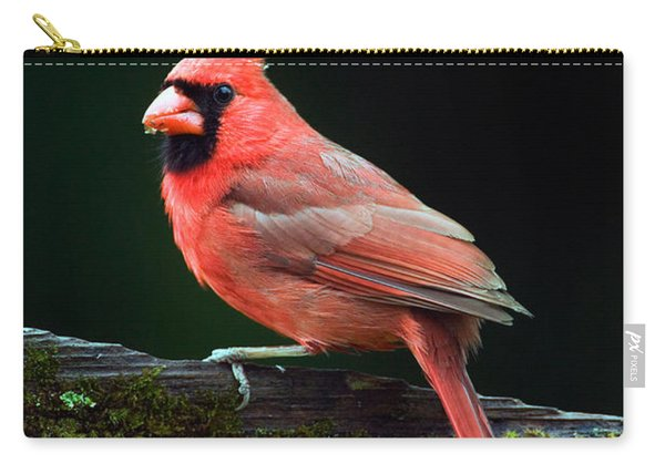 Male Northern Cardinal Cardinalis Carry-all Pouch