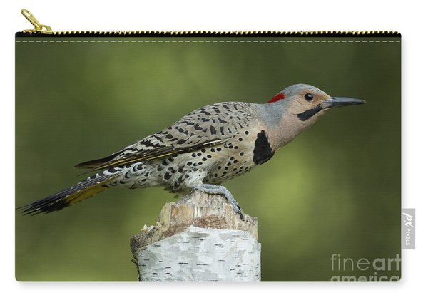 Male Northern Flicker Carry-all Pouch