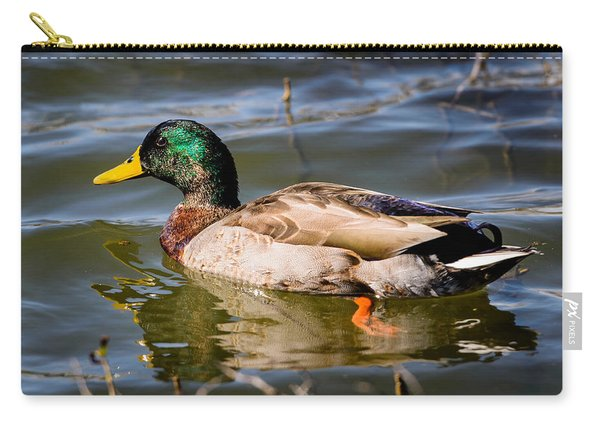 Mallard In Pond Carry-all Pouch