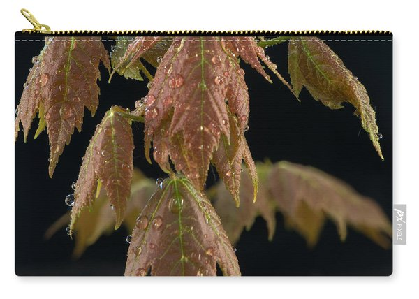 Maple Leaves With Water Drops Carry-all Pouch