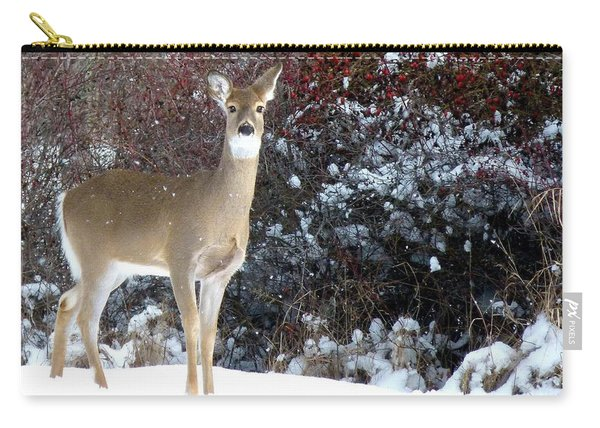 March Snow And A Doe Carry-all Pouch