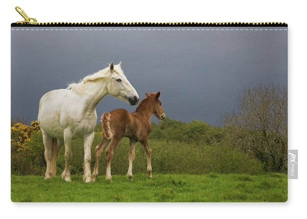 Mare And Foal, Co Derry, Ireland Carry-all Pouch