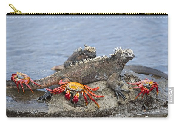 Marine Iguana Pair And Sally Lightfoot Carry-all Pouch