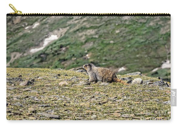 Marmot 1 Carry-all Pouch