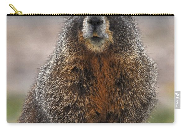 Carry-all Pouch featuring the photograph Marmot by Mae Wertz