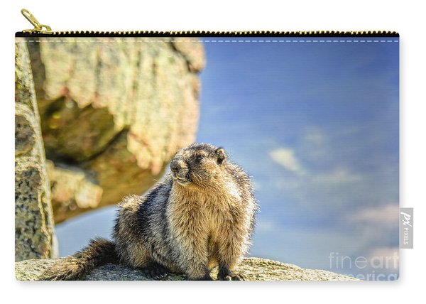 Marmot On The Rock Carry-all Pouch