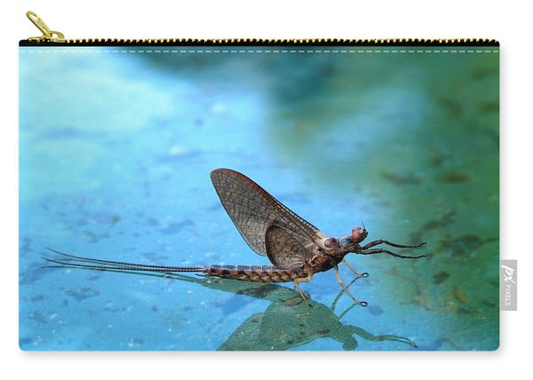 Mayfly Reflected Carry-all Pouch