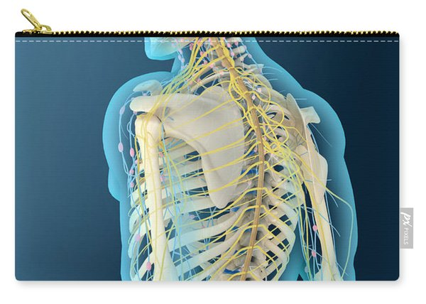 Medical Illustration Of Human Brain Carry-all Pouch