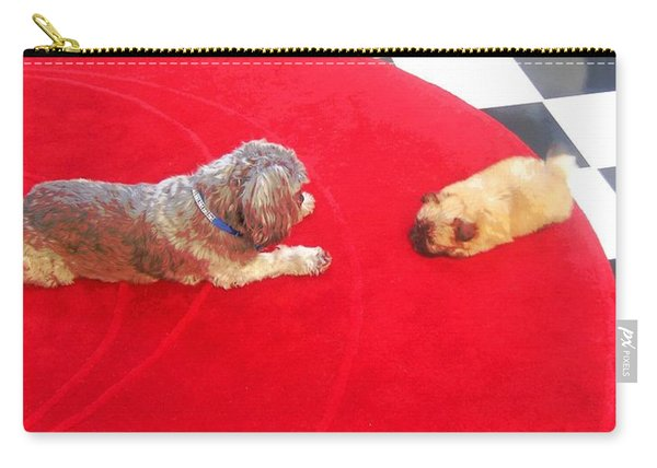 Dog And Puppy Pet Photography Lhasa Apso Shih Tzu Pomeranian   Carry-all Pouch