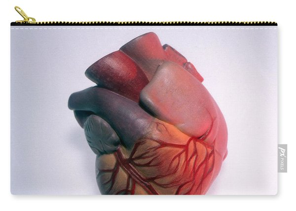 Model Of Heart Carry-all Pouch