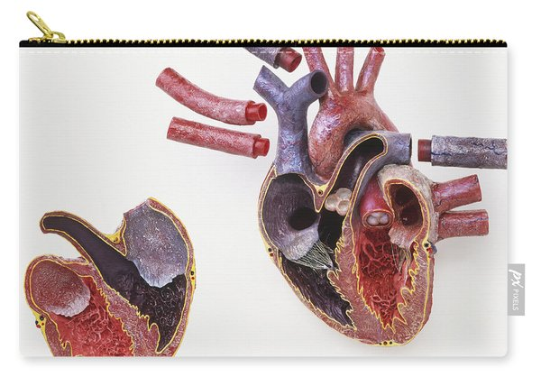 Model Of Human Heart Carry-all Pouch