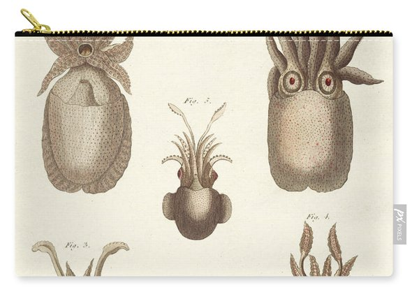 Molluscs Or Soft Worms Carry-all Pouch