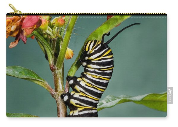 Monarch Caterpillar On Milkweed Carry-all Pouch