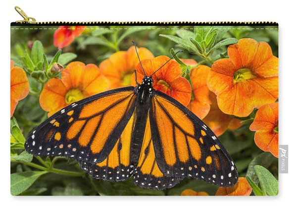 Monarch Resting Carry-all Pouch