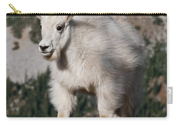 Mountain Goat Kid Standing On A Boulder Carry-all Pouch