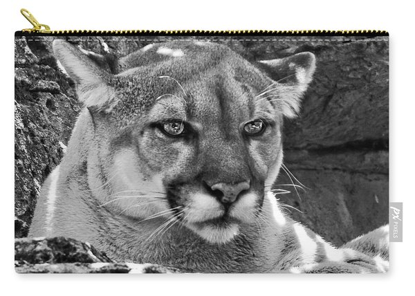Mountain Lion Bergen County Zoo Carry-all Pouch
