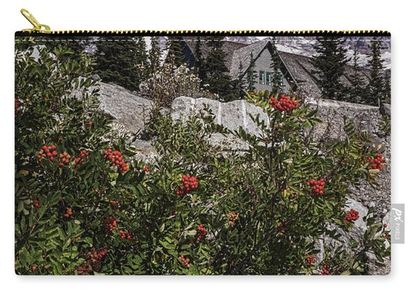 Mt Ash At Mt Rainier Carry-all Pouch