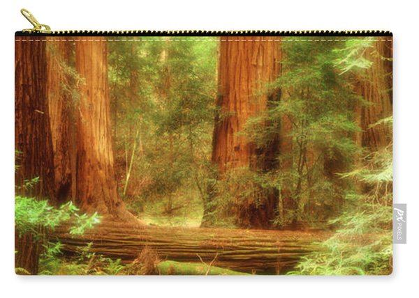 Muir Woods, Trees, National Park Carry-all Pouch