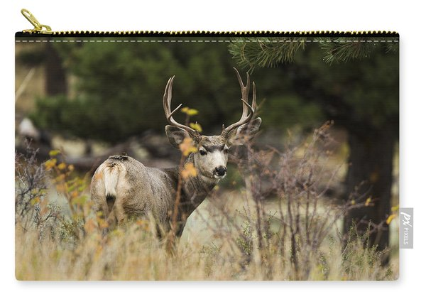 Mule Deer I Carry-all Pouch