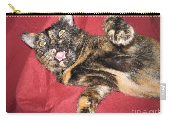 My Funny Cat Carry-all Pouch