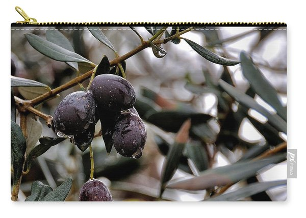 Nazareth Olives Israel Carry-all Pouch