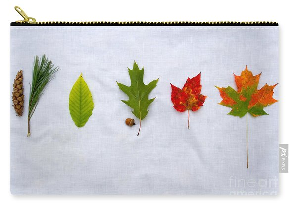 Needle And Leaf Comparison Carry-all Pouch