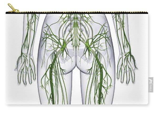 Nervous System, Illustration Carry-all Pouch