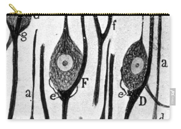 Neural Connections Illustrated Carry-all Pouch