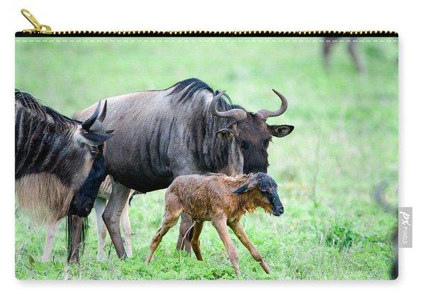 Newborn Wildebeest Calf Carry-all Pouch