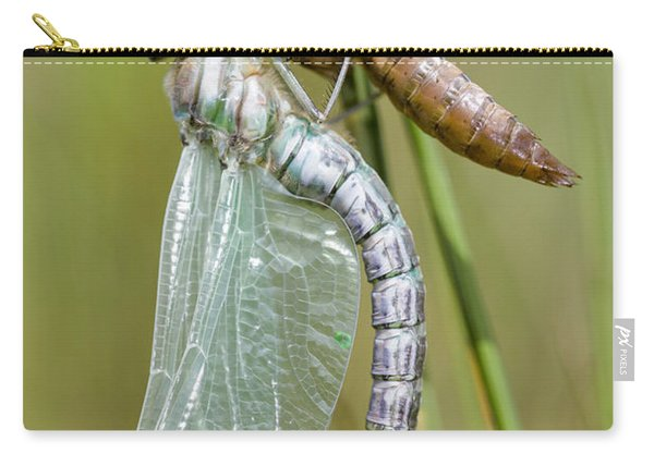 Newly Emerged Subarctic Darner Carry-all Pouch