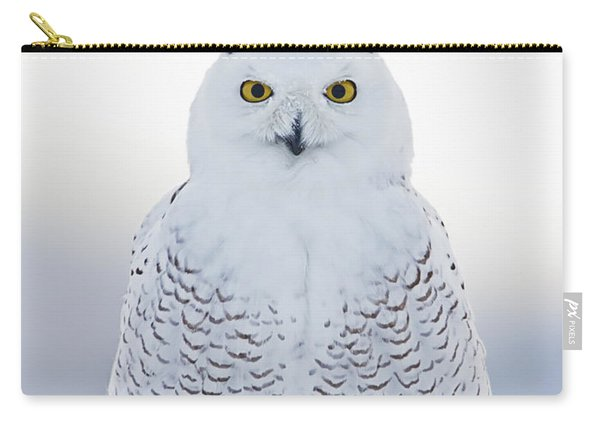 Nh Seacoast Snowy Owl  Carry-all Pouch