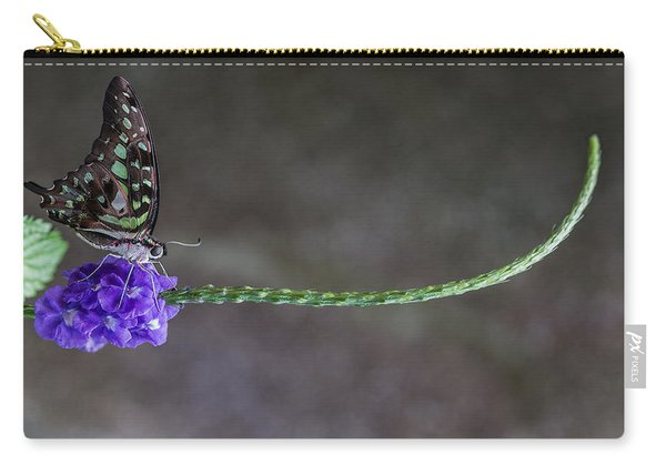 Butterfly - Tailed Jay II Carry-all Pouch