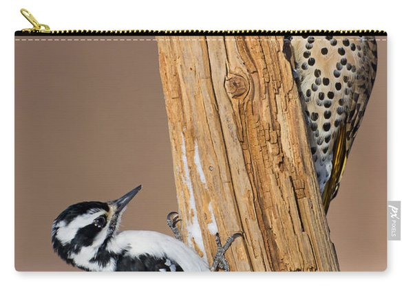 Northern Flicker And Hairy Woodpecker Carry-all Pouch