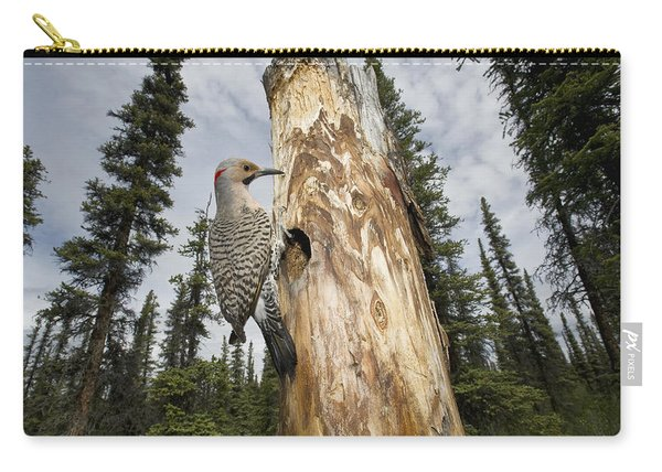 Northern Flicker At Nest Cavity Carry-all Pouch