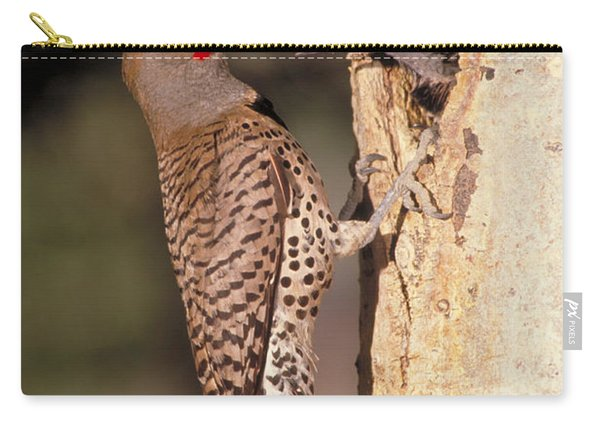 Northern Flicker At Nest Carry-all Pouch