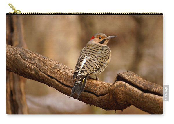 Northern Flicker II Carry-all Pouch