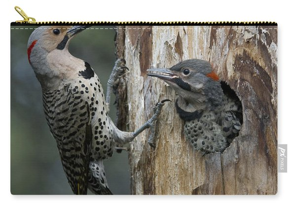Northern Flicker Parent At Nest Cavity Carry-all Pouch