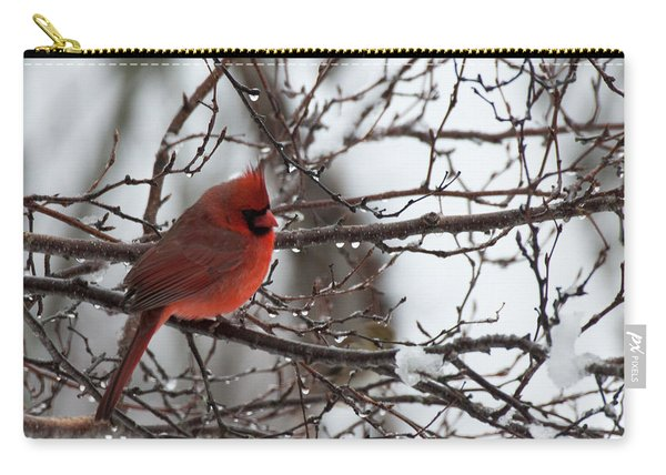Northern Red Cardinal In Winter Carry-all Pouch