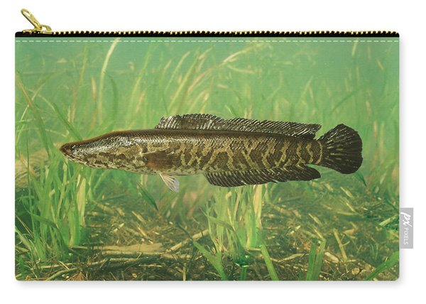 Northern Snakehead Carry-all Pouch